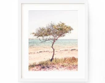 Cyprus Beach Print, Beach Photo, Coastal Decor, Beach Art Print, Tree Print, Cyprus Print, Nature Print, Coastal Print, Beach Print