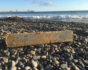 Laguna Beach Driftwood