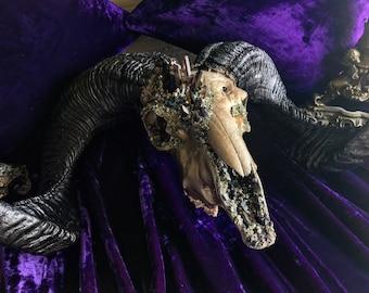 Ram Skull * Crystallized Skull * Real animal Skull * Animal Skull * Taxidermy * Crystal Animal Skull * Animal Bones * Animal Skull Decor *