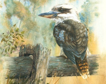 "Kookaburra print of original watercolour painting size A3 11.7""x16.5"", kookaburra print australian bird art print, wildlife painting print"