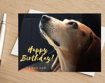 """Beagle Dog Happy Birthday Greetings Card """"To Our Dog"""""""