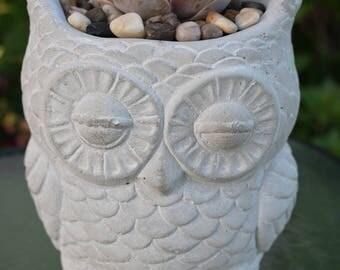 Stone Owl Pot