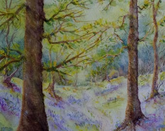 Bluebell Wood...a limited edition print from an original watercolour by Gillian Ousby.
