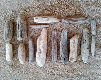 15 Driftwood Pieces