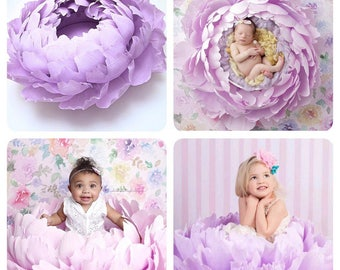 Paper Flower  | Newborn Photo Prop | Paper Flowers | Paper Flower Wall Art | Newborn baby photo | Newborn Photo Props