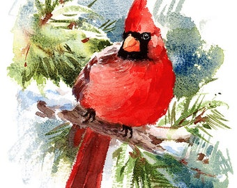 Bird Cardinal Watercolour Painting Q92