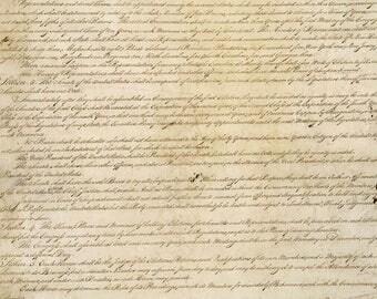 US Constitution Banner