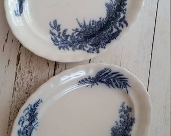 Vintage Blue Willow Plates (2)