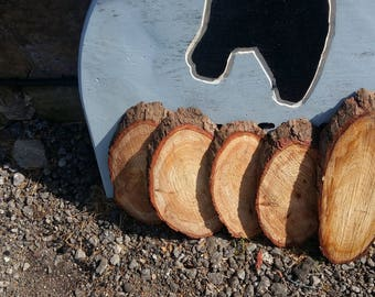 Rustic Wood Slices for signs