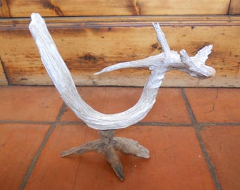 Drift wood statue, depicting a sweet dragon.