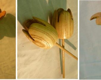 Daisy, Tulip or dipladenia. Wood - Turning handcrafted flower