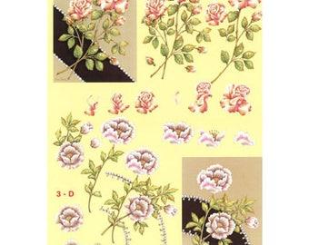 PAR077 roses and white roses