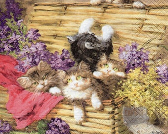 280 small cats in cases of 1 towel in paper flowers
