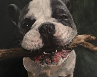 "Custom Pet Oil Painting Portraits, 12""x 12"", August SALE!"