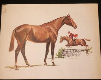 Vintage Sam Savitt horse riding or horse jumping lithograph circa 1950