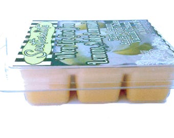 When Life Gives You Lemons, Make Lemonade (Lemon Poundcake) Super Scented Wax Melts (6 cube pack)