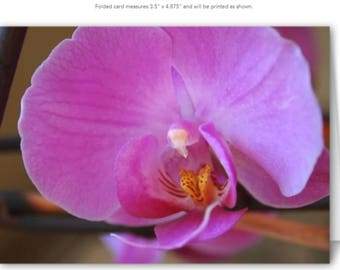 Orchid #1 Blank Note Cards