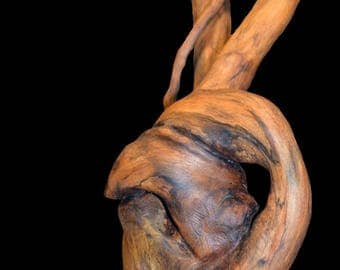 "Natural Driftwood ""Key of willow"" sculpture"