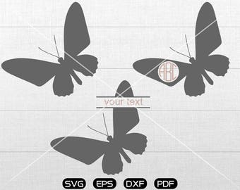 Butterfly Svg, lovely Butterfly Clipart, Monogram Frame cricut, cameo, silhouette cut files commercial & personal use