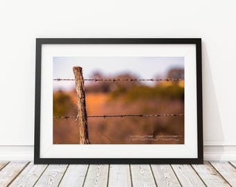 Texas Hill Country Old Barbed Wire Fence and Cedar post, Landscape Photography, Wall Art, Home Decor, Country Art