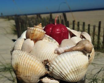 White Sea Shell Coastal Candle Holder