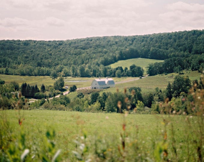 Farm in Summertime, Upstate, New York - 8x10 Digital C-Print.