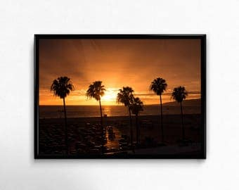 Sunset, Santa Monica, California, Beach, Palm Tree, Coconut, light, picture, interior, digital download, art, photography,