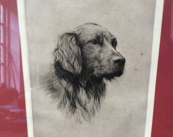 """Large Vintage Framed and Signed Etching """"Sportsman"""" by H Goffrey Subject Black Retriever Dog"""
