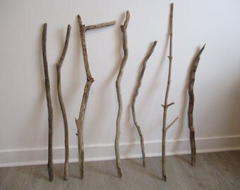 Set of driftwood (7 pieces)
