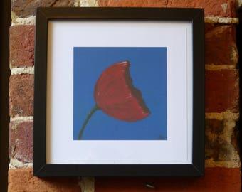 Poppy on blue - framed print 25cm x 25cm
