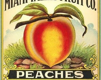 Peaches Label Cross Stitch Pattern PDF