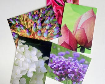 Art photography 5 postcard set. Flowers/nature. Pink, purple, green, floral. Frameable, affordable photograph prints