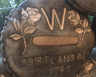 Portland Water Cover pillow