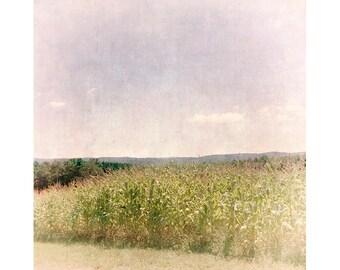 Cornfield Landscape Photography, Lomography, Holga Print, Farmhouse Decor, Rustic Decor