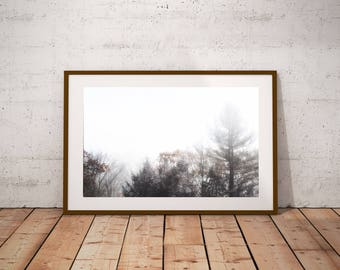 Printable Forest Landscape Art, Large Poster Art, Modern Minimalist Art, Farmhouse Decor, Rustic Wall Art