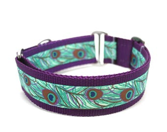 "1.5"" Peacock Feather buckle or martingale dog collar"