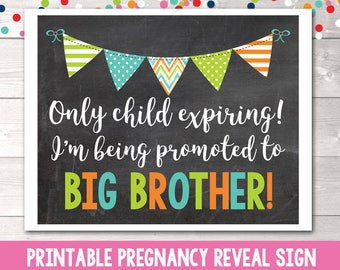 Promoted to Big Brother Printable Pregnancy Reveal Announcement Photo Prop Instant Download Printable PDF Only Child Expiring Sign