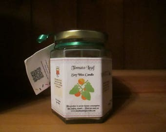Tomato Leaf Scented Soy Wax Candle 300g