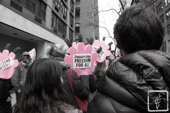 """Purrsue Freedom,"" New York City Women's March, 2017."