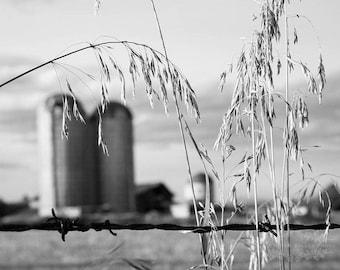 Farm Photograph, Rustic Wall Decor, Silo Photo, Farmhouse Decor, Adirondack Barn, Fine Art Photography, Wall Art, Black and White, Grey
