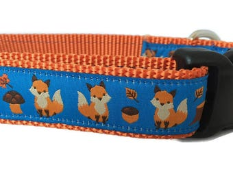 Dog Collar, Fox, 1 inch wide, adjustable, quick release, metal buckle, chain, martingale, hybrid, nylon