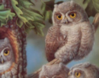 Peek-A-Whoo: Screech Owls Collector Plate, Joe Thornbrugh, Knowles China, Baby Owls of North America