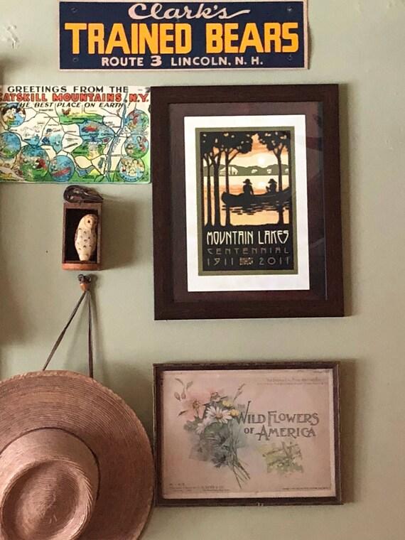 "vintage GH Buek framed litho, ""The wildflowers of America"""