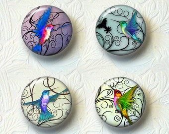 "Hummingbird Magnet Set Choose your Favorite from the 2 Different Prints, 1.5"" Size, Buy 3 Sets Get 1 Set Free057M"