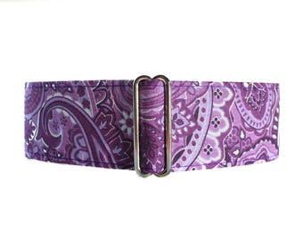 Purple Martingale Collar, 2 Inch Martingale Collar, Paisley Martingale Collar, Paisley Dog Collar, Purple Dog Collar, Purple Paisley