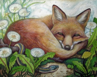 Sleepy Fox....Giclee Fine Art Print