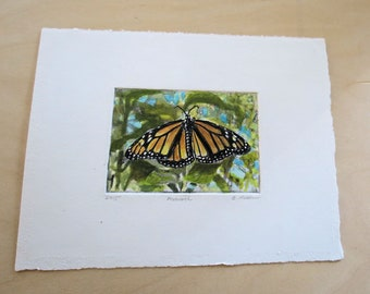 Monarch butterfly photo etching with hand tinting