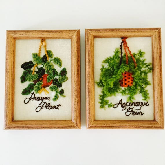 Vintage Hand Embroidered House Plant Picture Framed Set of 2 Bungalow Boho Wall Art Hanging Asparagus Fern Prayer Plant Bohemian Art