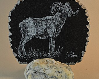 Dall sheep hand-etched on black granite tile
