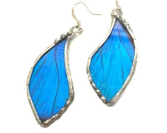 Real Blue Morpho Butterfly Wing Glass Earring Dangles